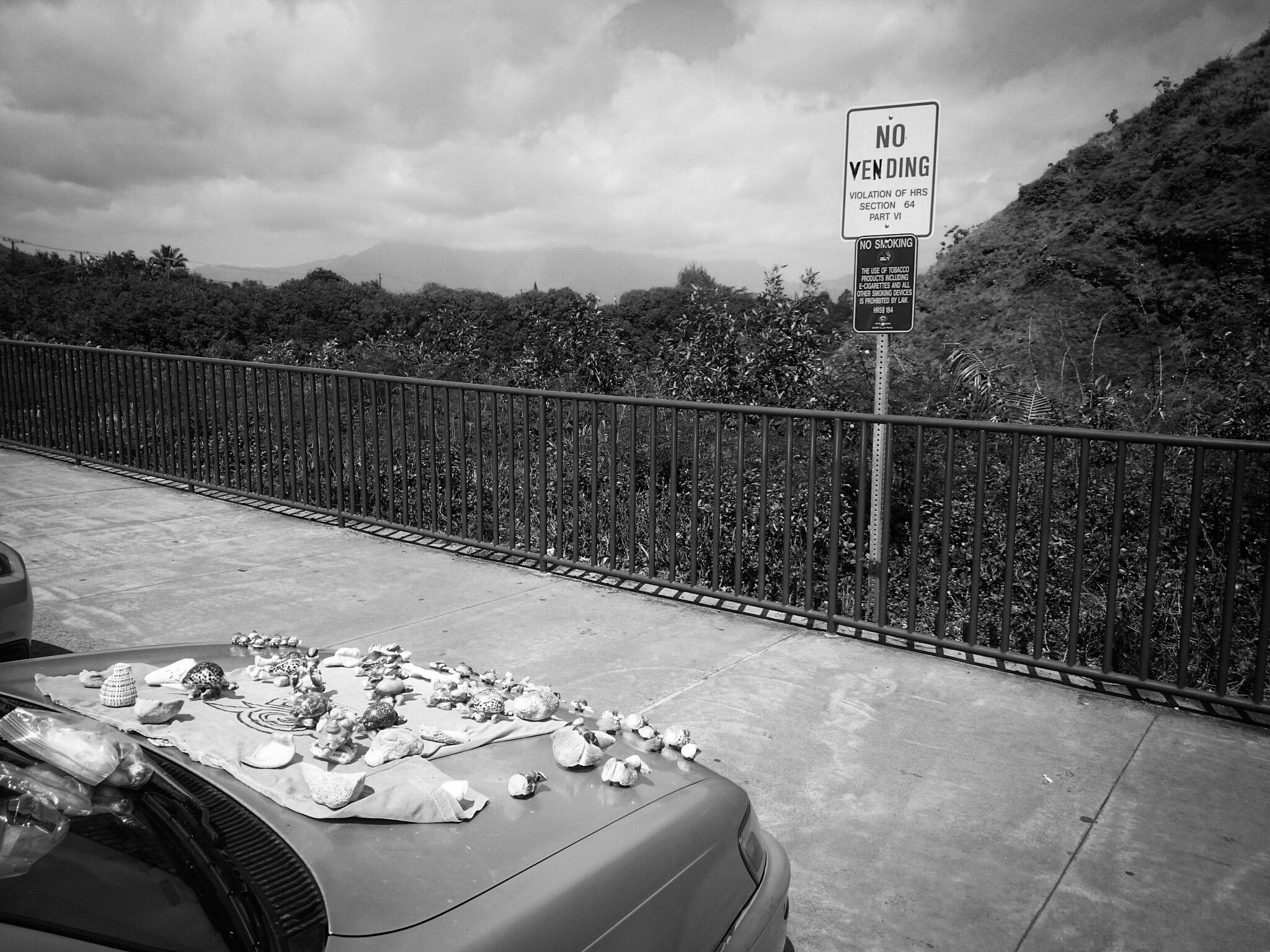 Vending or no vending... Opaeka'a falls, Kauai
