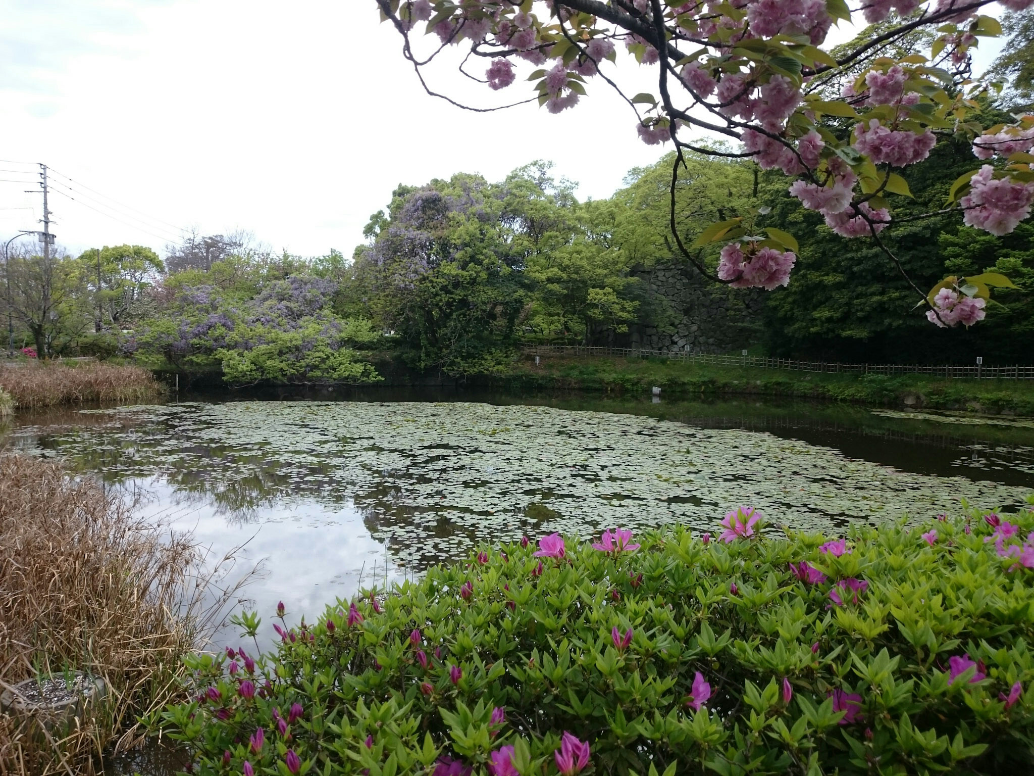 À proximité des ruines du château de Fukuoka