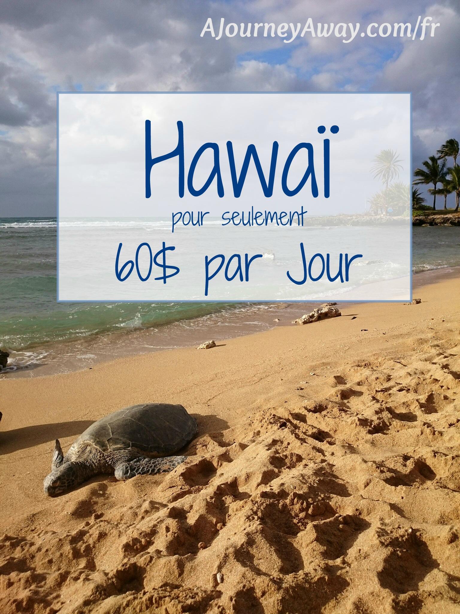 Comment voyager à Hawaï pour seulement 60 dollars par jour | A Journey Away