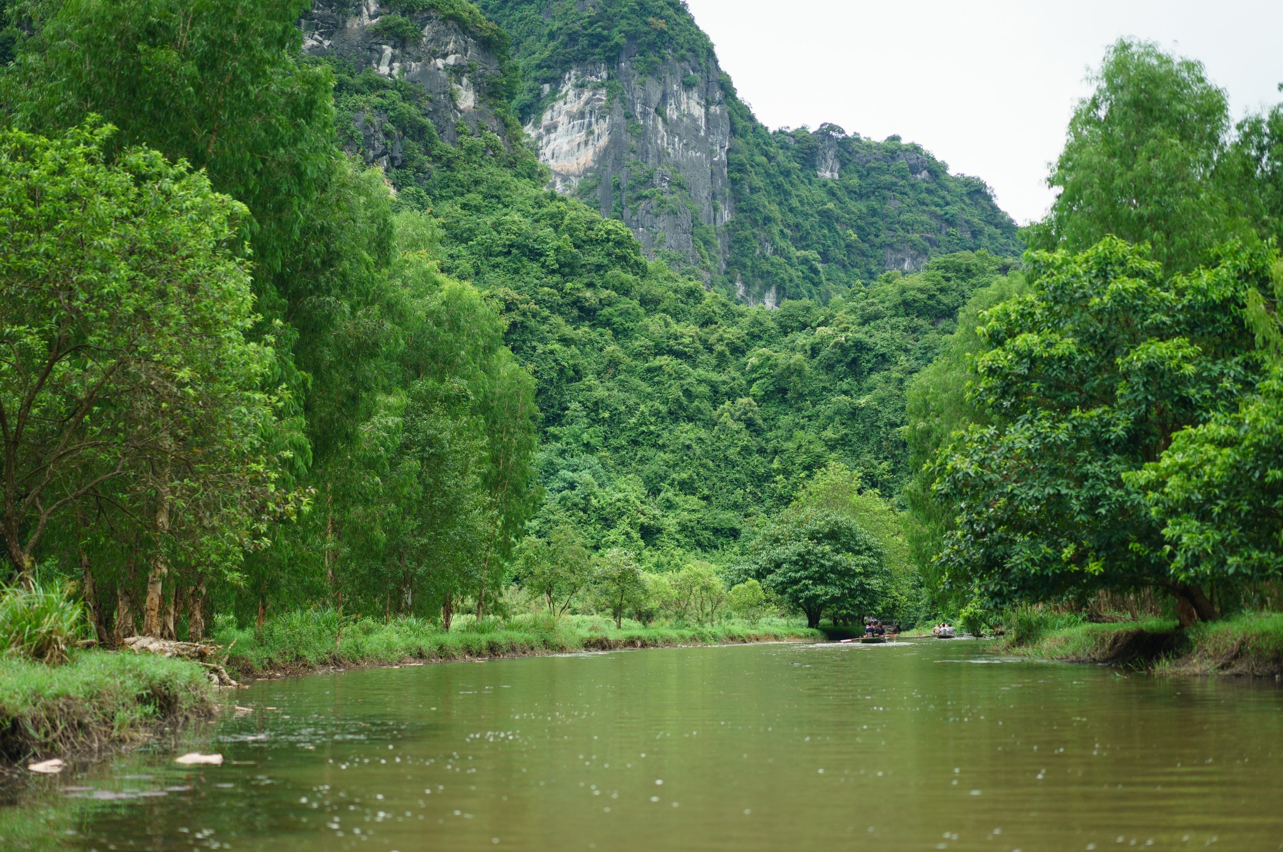 Tour en bateau à Tam Coc
