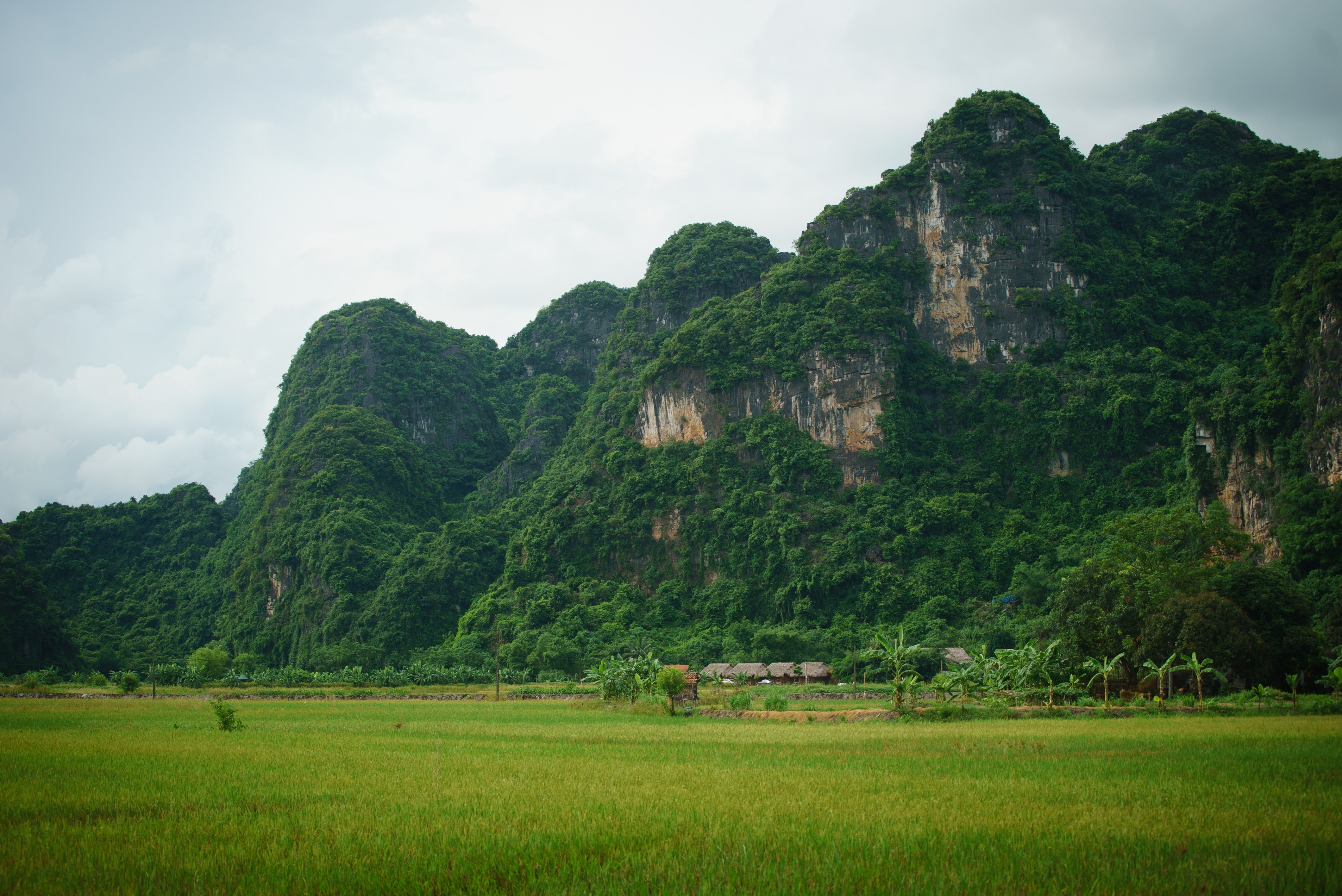 Tam Coc countryside