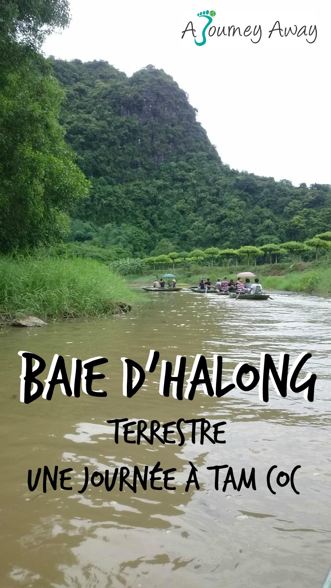 Baie d'Halong terrestre : une journée à Tam Coc