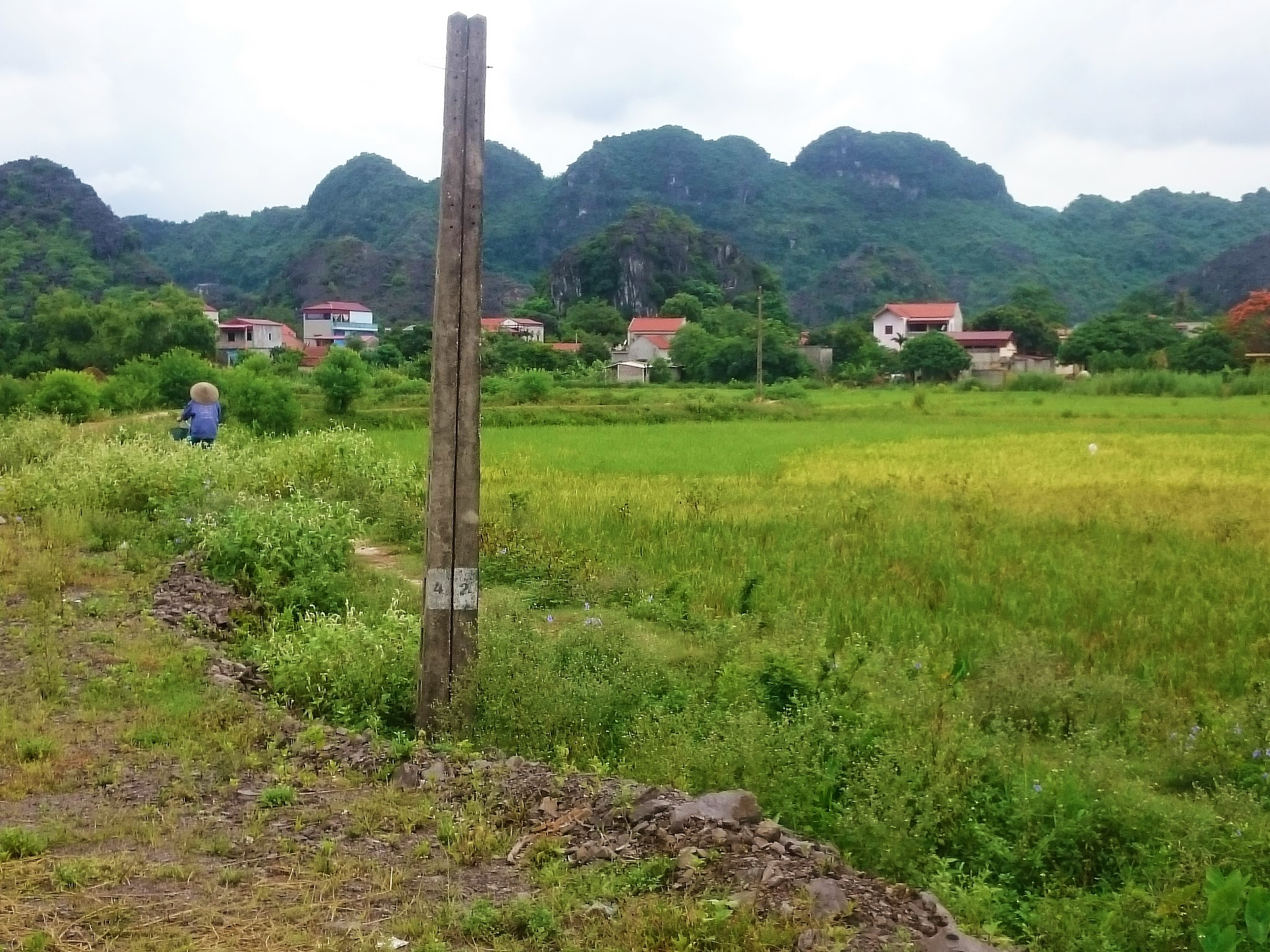 Bike riding in Tam Coc countryside