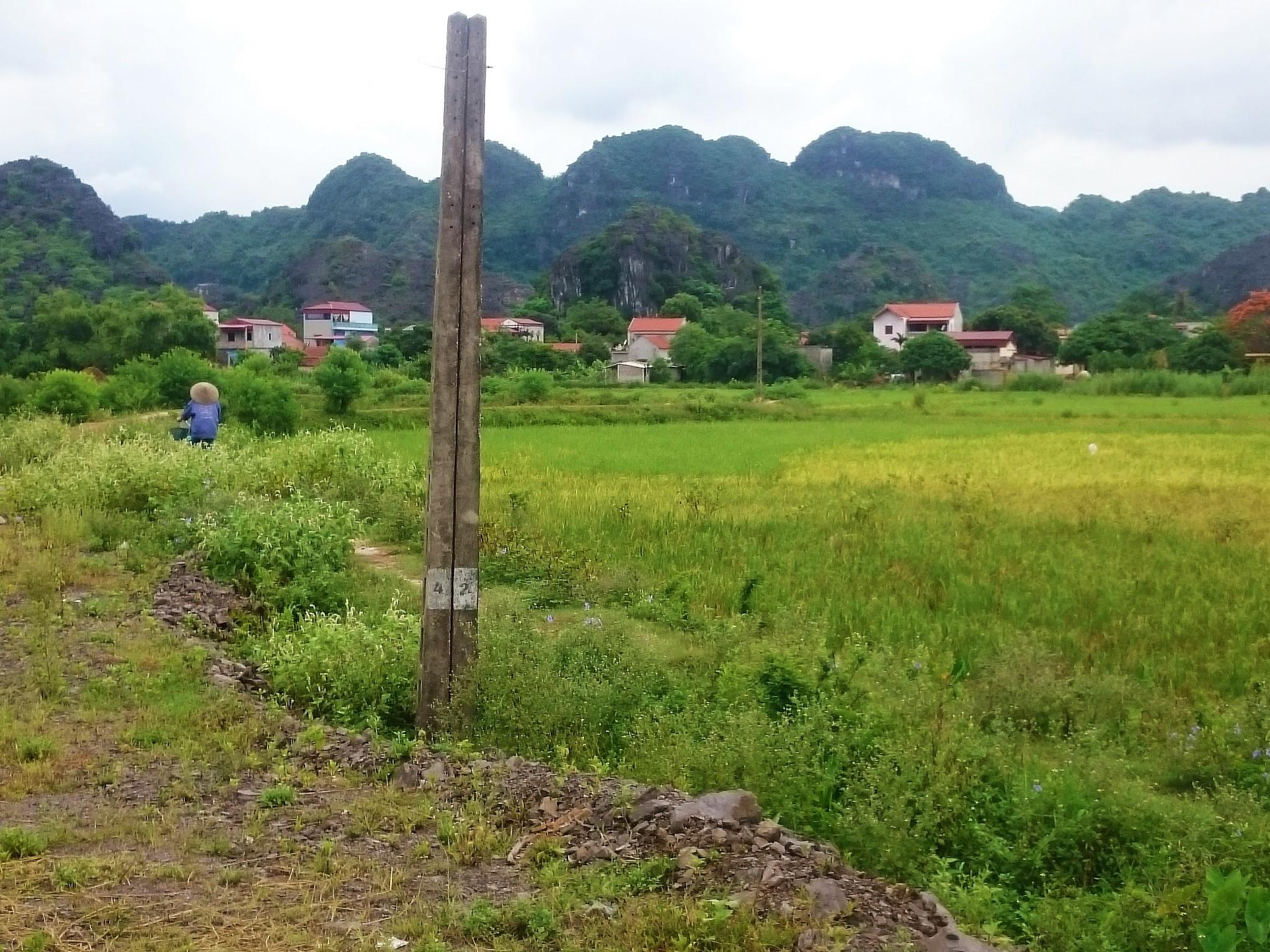 Tour de vélo dans la campagne de Tam Coc
