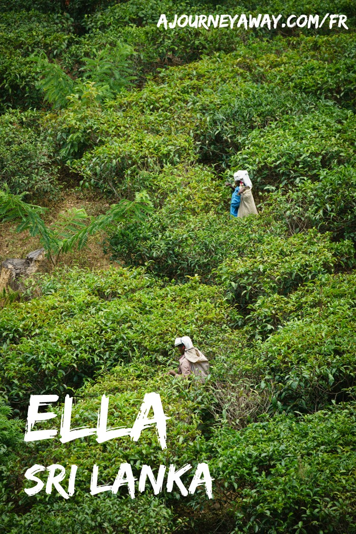 Que faire dans le joli petit village d'Ella, Sri Lanka