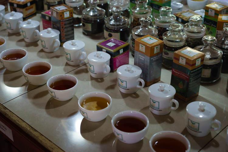 Handunugoda tea estate, Sri Lanka
