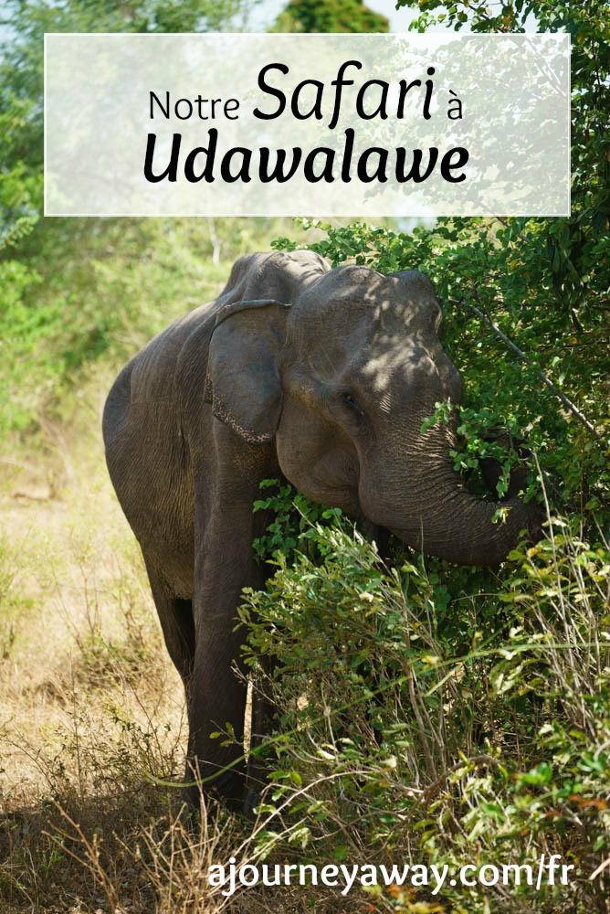 Partir en safari dans le parc national d'Udalawale, Sri Lanka