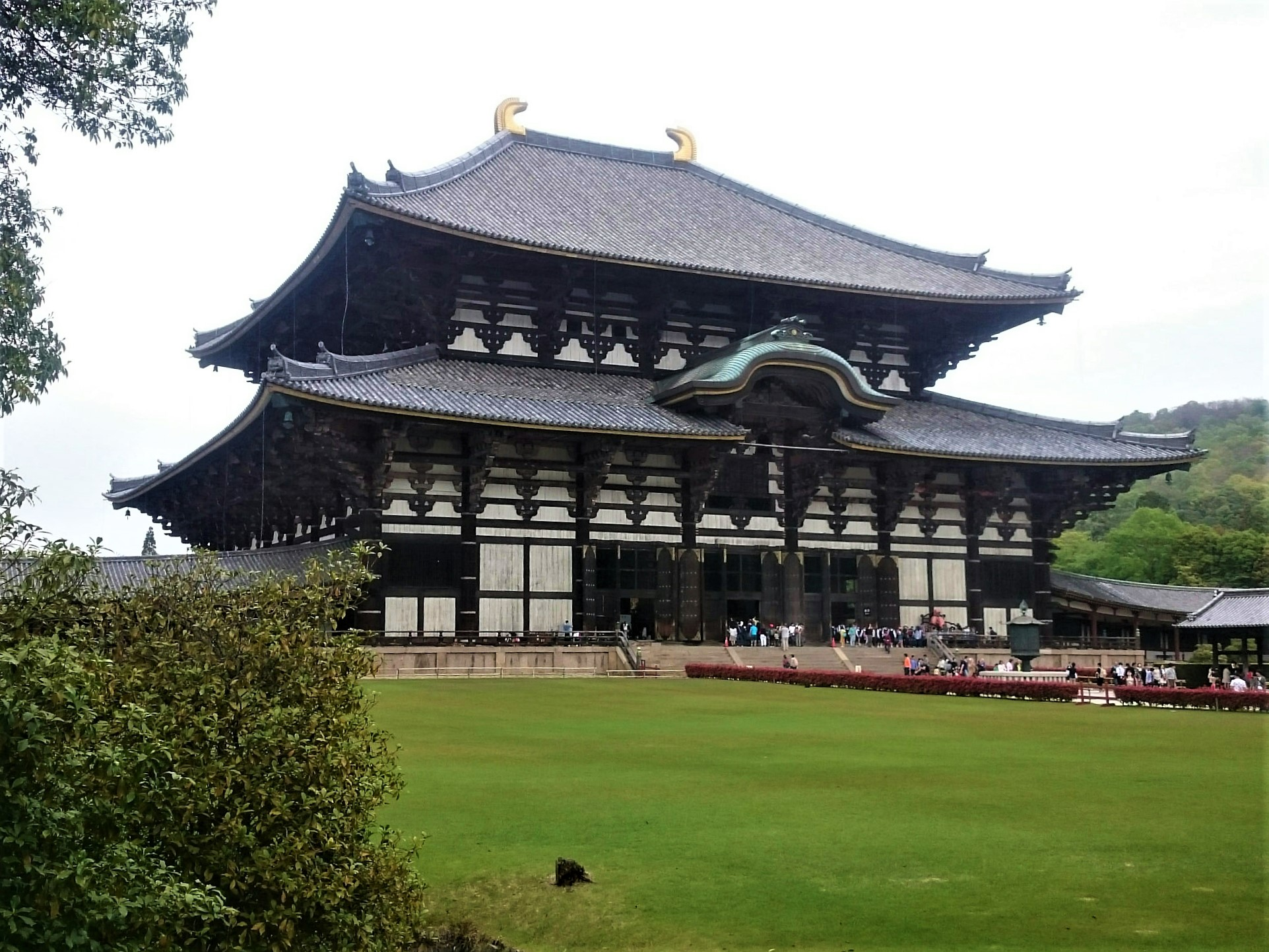 Temple de Todai-Ji, salle du Grand Bouddha