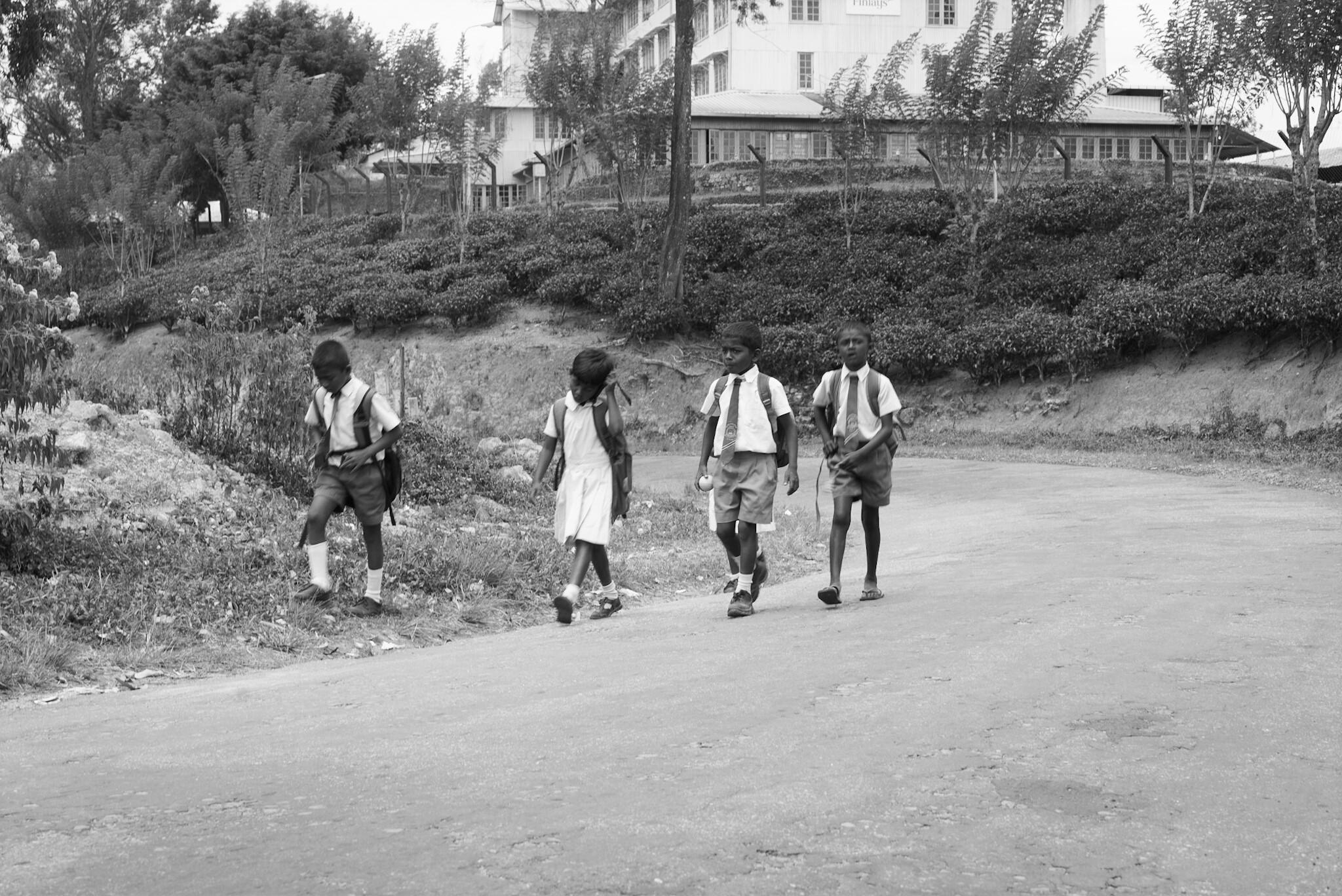 Children back from school, Sri Lanka
