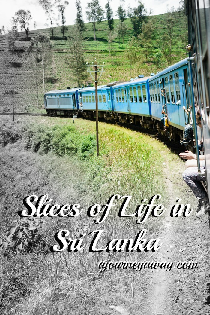 Discover life in Sri Lanka through pictures
