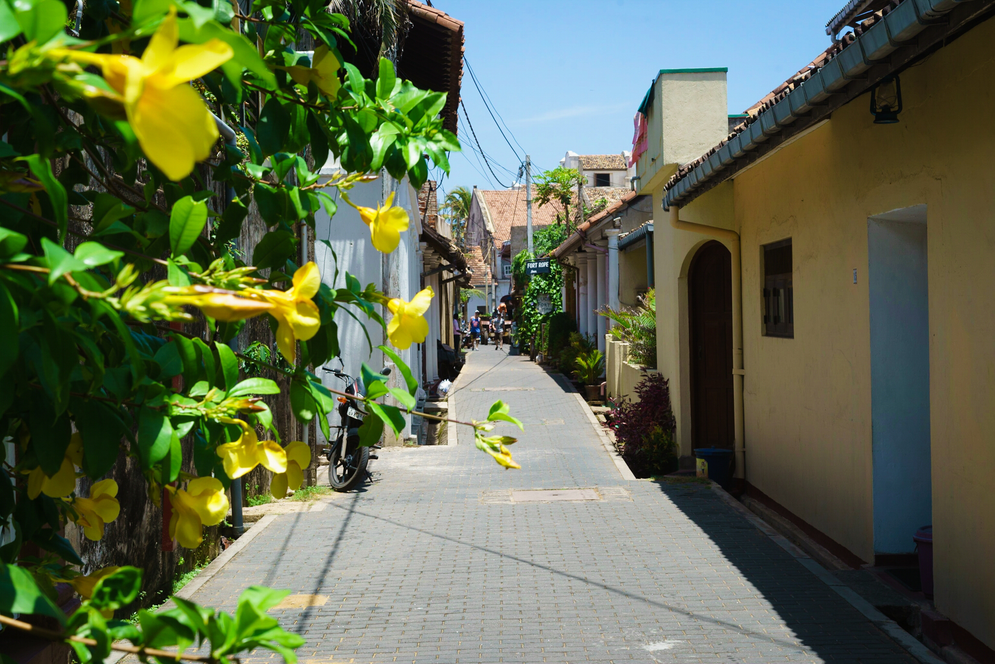 Pretty street in Galle, Sri Lanka